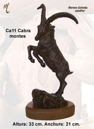 ca11f